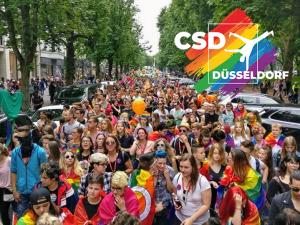 csd-crowd